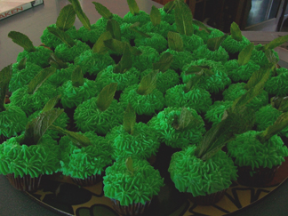 Chocolate cupcakes with mint flavored icing and a mint leaf