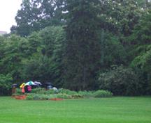 White House Veggie Garden