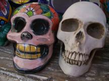 Painted skulls