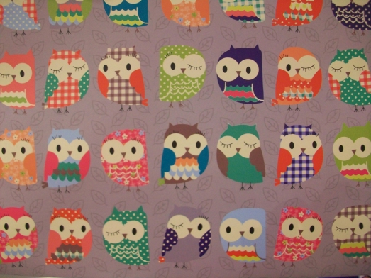 Hoot Hoot - owl pattern on a pocket folder