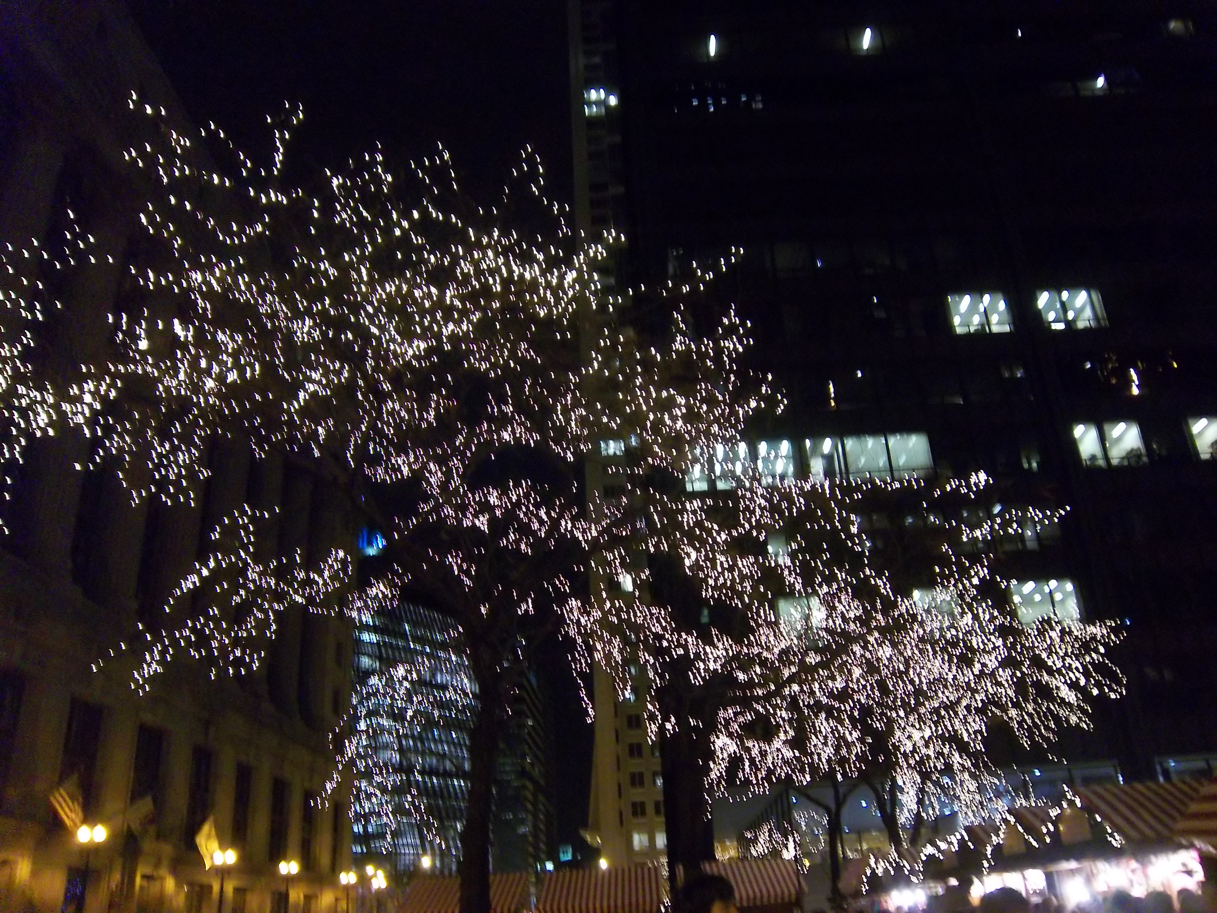 Downtown Chicago At Christmas Time Labfive