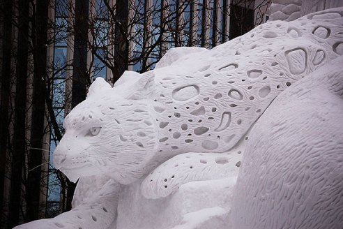 snow-leopard-qii4jc