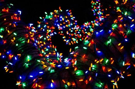 zoolights-02
